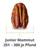 spec junior mammut